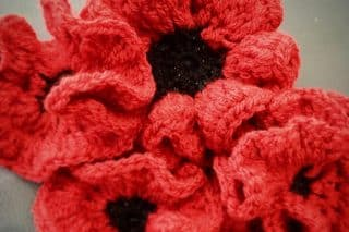 Raise Funds for the Royal British Legion Poppy Appeal